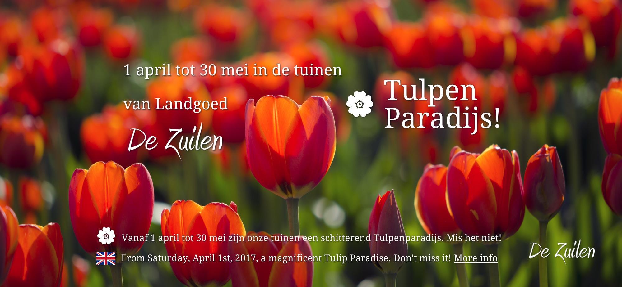Tulpenparadijs De Zuilen Hillegom